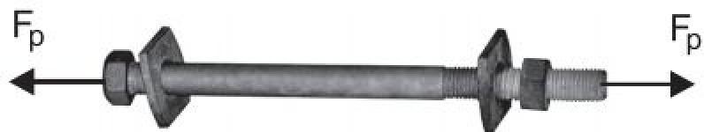 Специальный болт SB16.219
